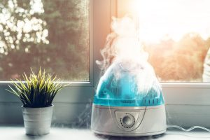 Read more about the article Should You Use Distilled Water In A Humidifier?