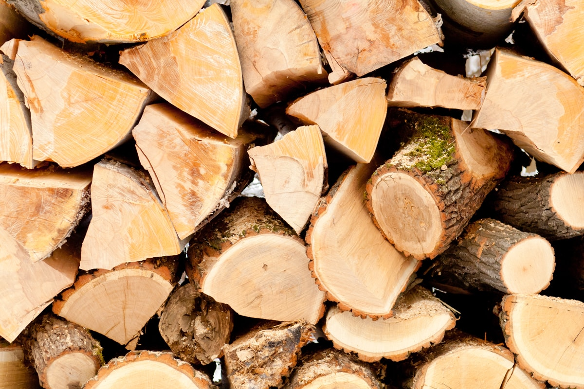 Chopped unseasoned firewood stacked in a storage room