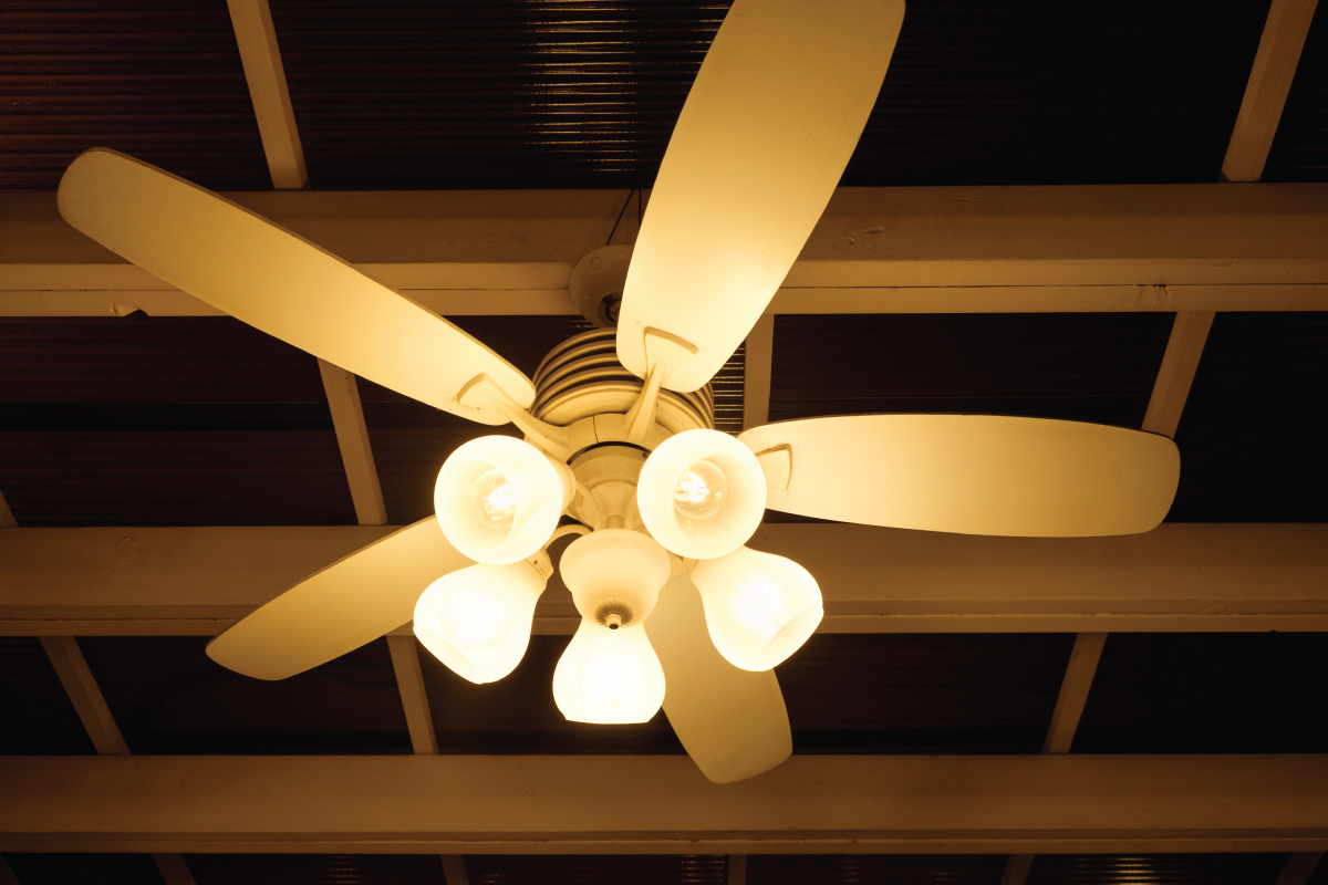 indoor ceiling fan with lights