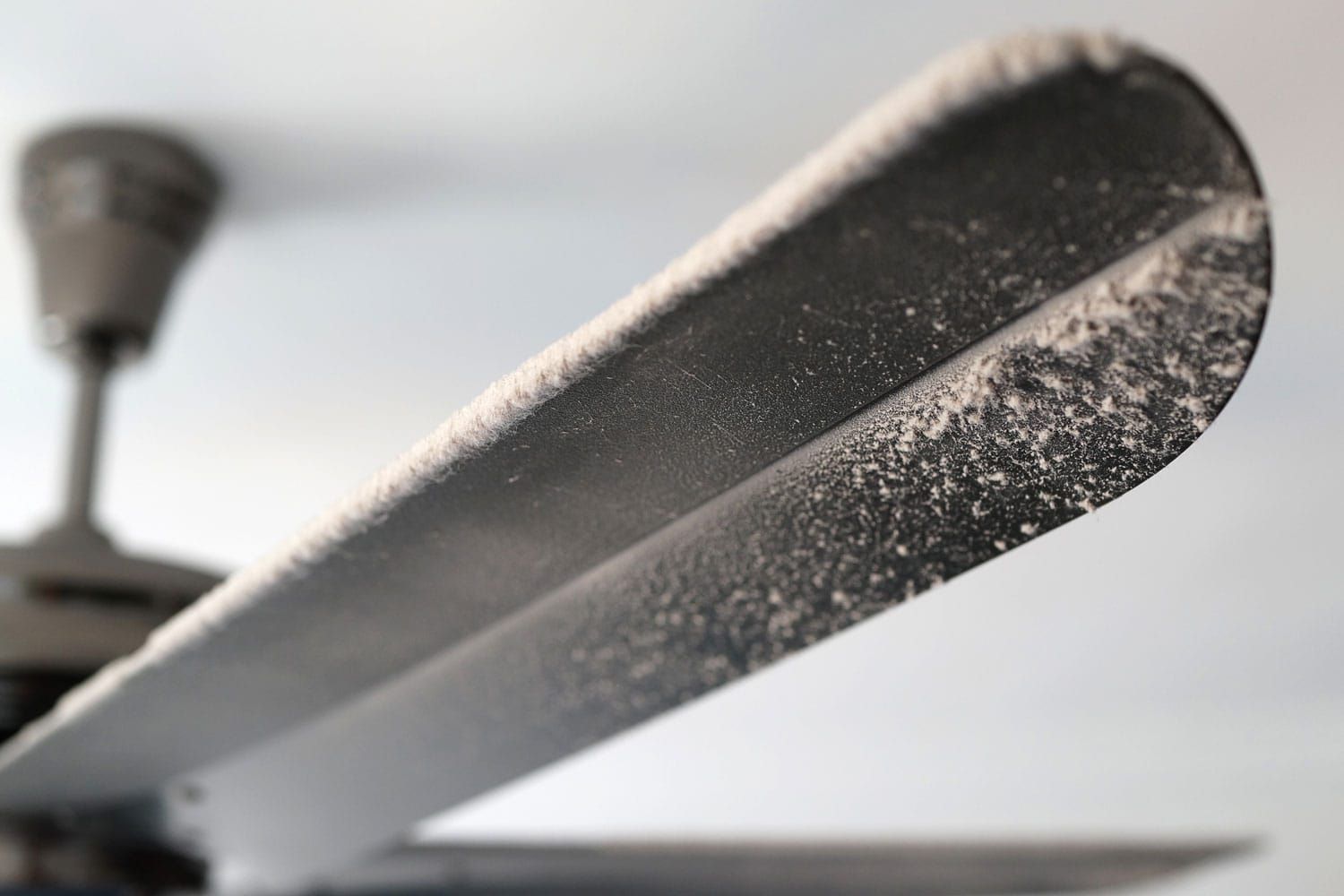 Close Up Dusty Ceiling Fan With Thick Dust Blocking The Air Flow