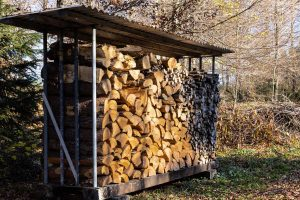 Read more about the article Should You Cover A Woodpile?