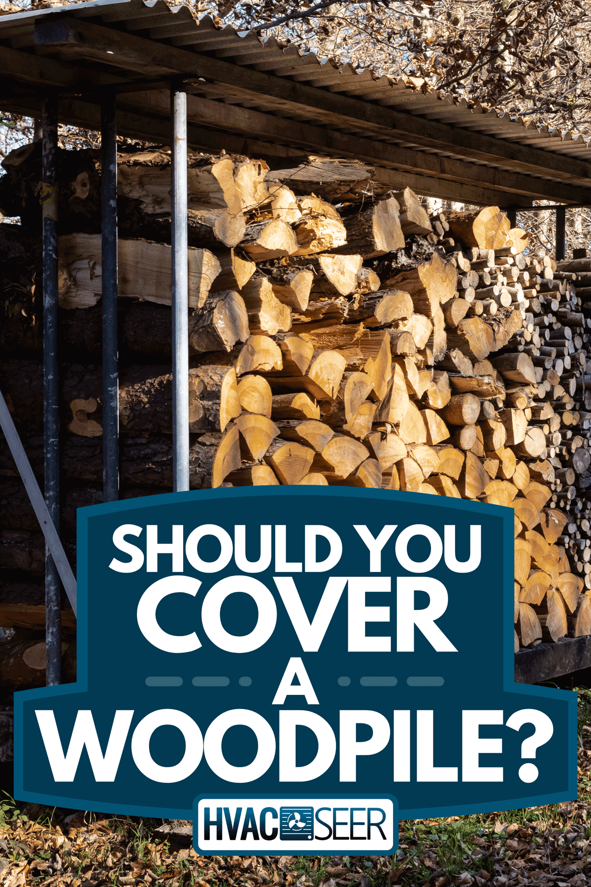 A covered wood pile with firewood for winter in sunny autumn forest, Should You Cover A Woodpile?