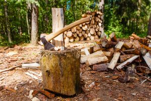 Read more about the article Should You Let Wood Dry Before Splitting It?