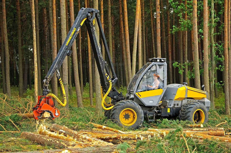 Machine grabbing tree trunk
