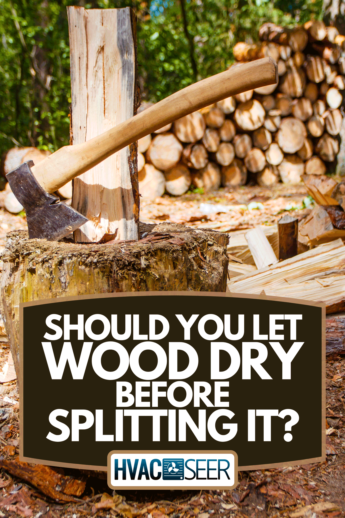 A log splitting in pine forest, Should You Let Wood Dry Before Splitting It?