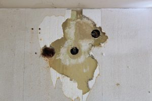 Read more about the article How To Close And Insulate An Old Hole In The Wall